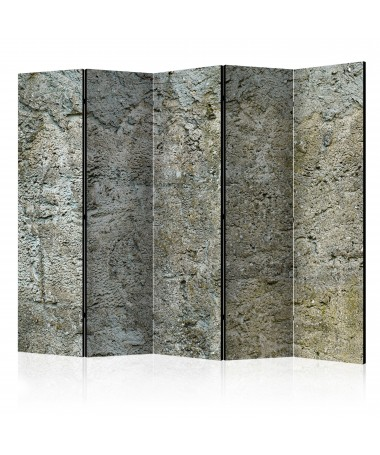 Paravento - Stony Barriere II [Room Dividers]