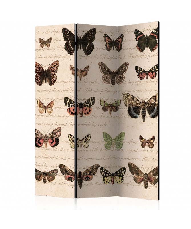Paravento - Retro Style: Butterflies [Room Dividers]