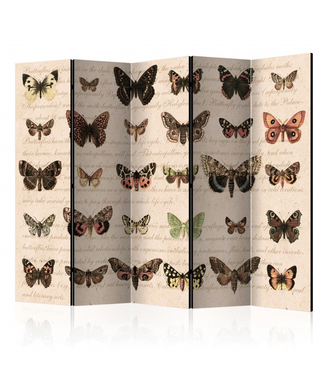Paravento - Retro Style: Butterflies II [Room Dividers]