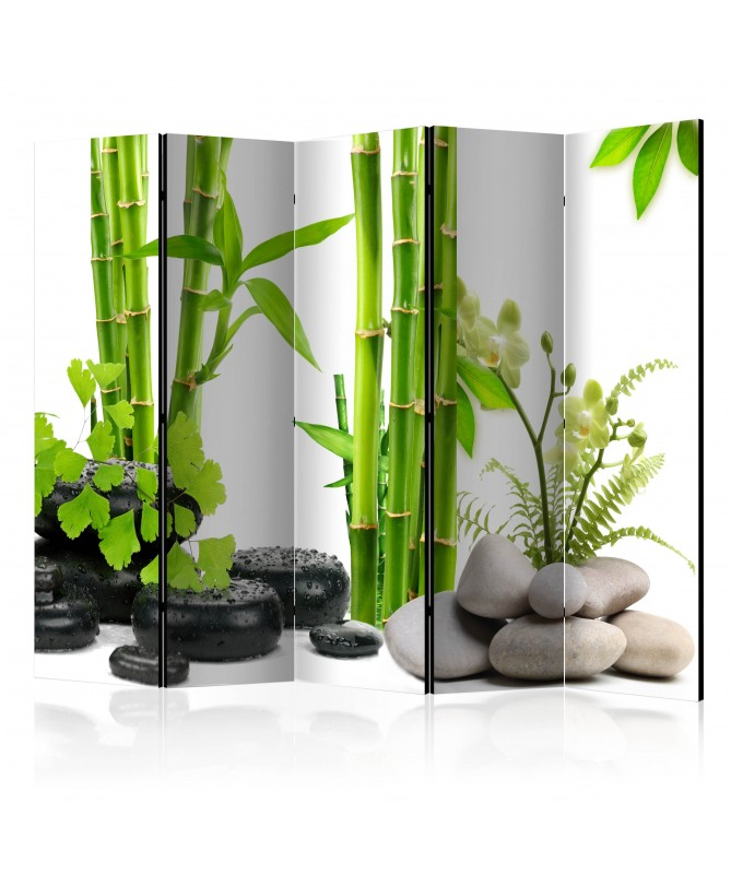 Paravento - Bamboos and Stones II [Room Dividers]