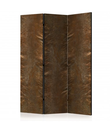 Paravento - Copper Chic [Room Dividers]