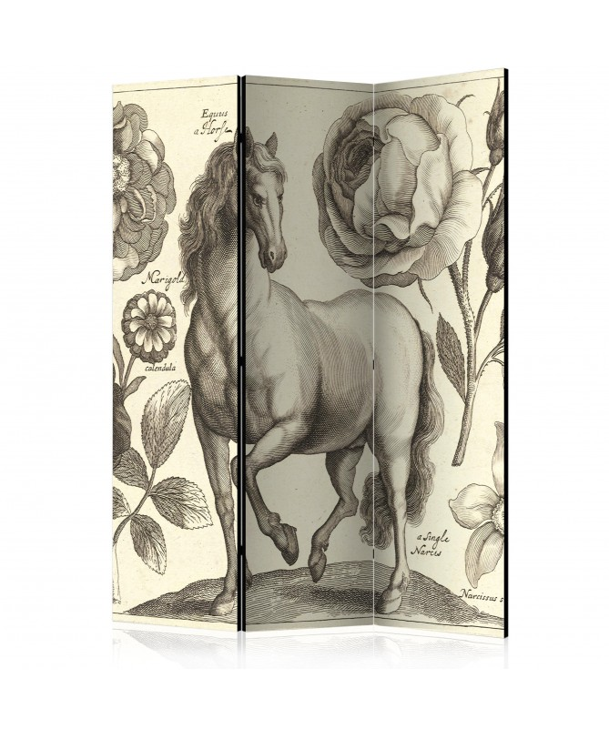 Paravento - Horse [Room Dividers]