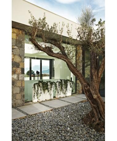 Portavaso Bamboo