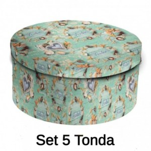 Scatola cartone 1-5 conchiglie tondo cmø40,5h17,8x33