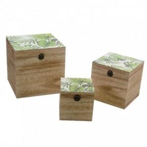Scatola legno exotic 1-3...